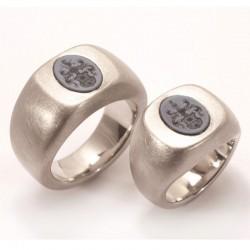 Wedding rings, signet rings, 950 palladium, ply stones